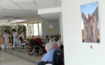 Les photos de Véronique Daly ont été exposées dans les locaux de la maison de retraite