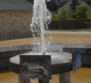 Nature belle et étrange à Chamberet (Corrèze) en été 2011